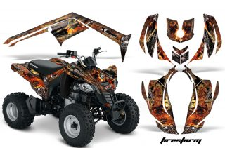 Can-Am DS250 Graphics 2006-2014