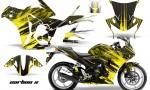 Honda CBR 250R 10 13 AMR Graphics Kit Wrap CarbonX Y 150x90 - Honda CBR 250R 2010-2013 Graphics