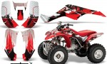 Honda TRX250 EX 2002 2005 AMR GraphicS KIT CX R 150x90 - Honda TRX 250EX 2002-2005 Graphics