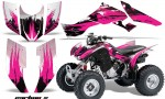 Honda TRX300 07 12 AMR Graphics Kit CX P 150x90 - Honda TRX 300EX 2007-2013 Graphics