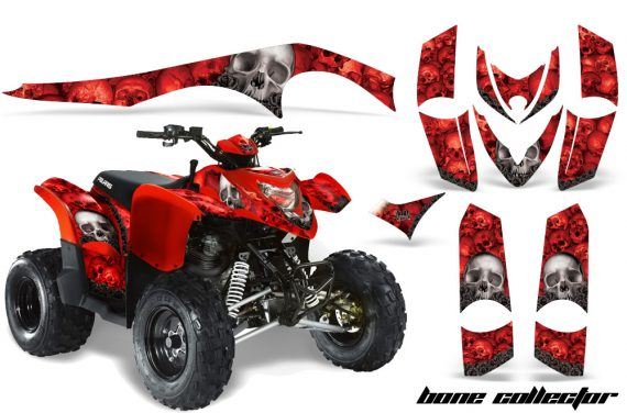 Polaris Phoenix AMR Graphics Kit BC R 570x376 - Polaris Phoenix 200 Graphics