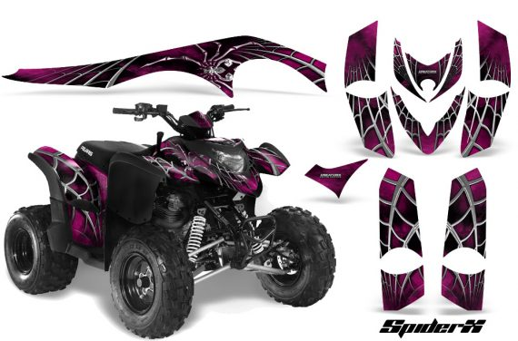 Polaris Phoenix CreatorX Graphics Kit SpiderX Pink 570x376 - Polaris Phoenix 200 Graphics