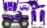 Polaris Sportsman 95 04 CreatorX Graphics Kit Tribal Bolts Purple 150x90 - Polaris Sportsman 400 500 600 700 1995-2004 Graphics