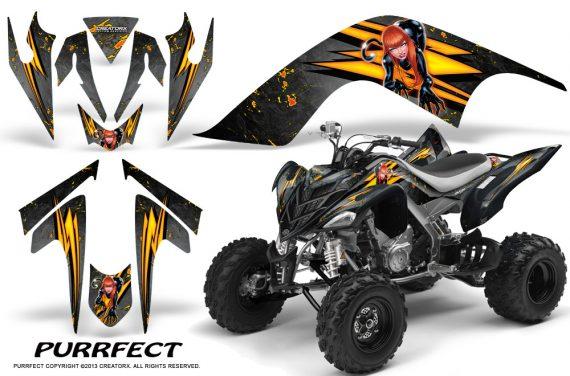 YAMAHA Raptor 700 CreatorX Graphics Kit Purrfect Silver BB 570x376 - Yamaha Raptor 700 2006-2012 Graphics