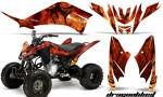 Yamaha Raptor 125 Graphics