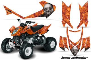 Arctic Cat DVX 400/300/250 Graphics